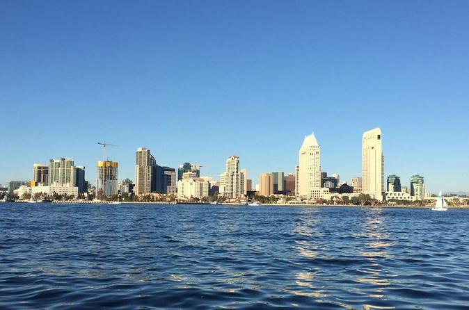 90 Minute Private San Diego Harbor Tour