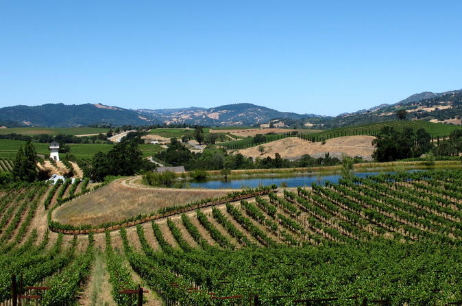 9 Hour Private Sonoma Zipline and Custom Wine Tour From San Francisco