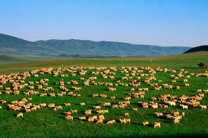 Private 6-days Cycling Trip around Qinghai Lake  from Xining