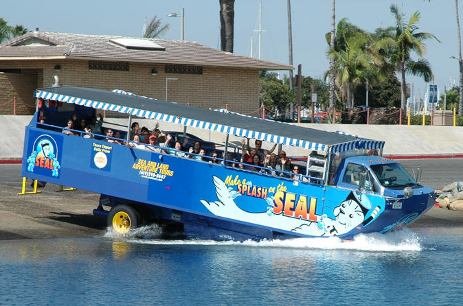 San Diego Shore Excursion: San Diego Seal Tour