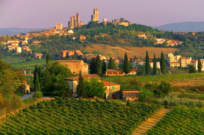 Tuscany-bike-tour-from-florence-in-florence-42997