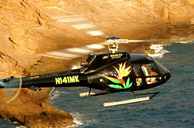 Oahu-super-saver-helicopter-tour-plus-dolphin-snorkel-adventure-in-oahu-140689