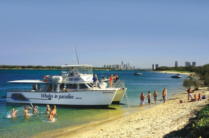 Island-swim-and-snorkel-cruise-from-the-gold-coast-in-gold-coast-108753