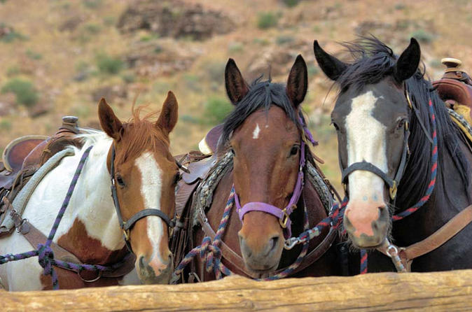 2-Hour Horseback Riding through Red Rock Canyon
