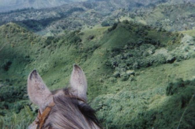 Small-group-horseback-riding-tour-for-experienced-riders-in-kauai-112555