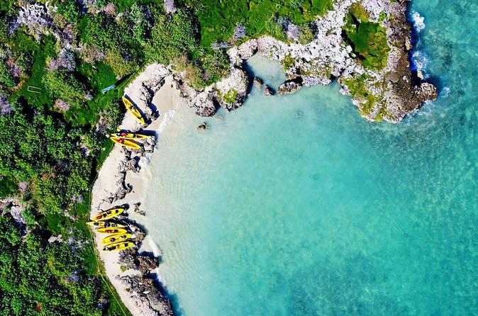 2-Hour Guided Kayaking Excursion