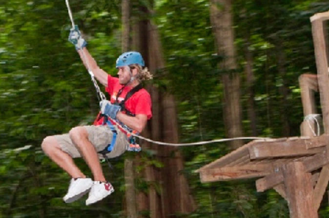St-lucia-shore-excursion-rainforest-aerial-tram-and-zipline-canopy-in-castries-47721
