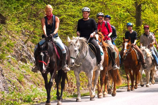 Scenic-horseback-riding-tour-from-san-juan-in-san-juan-115725