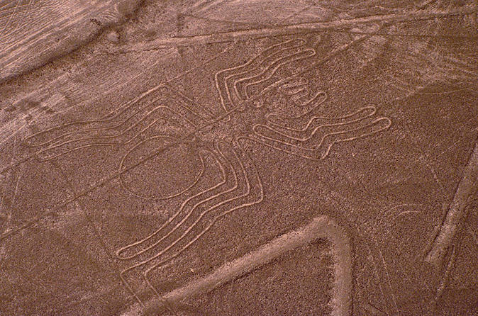Nazca-lines-air-tour-and-ballestas-islands-full-day-trip-from-lima-in-lima-120904