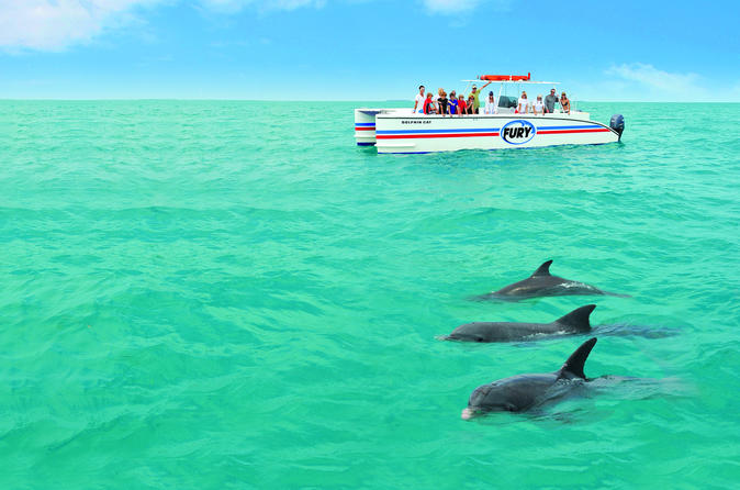 Key West Dolphin Watch and Snorkel Cruise