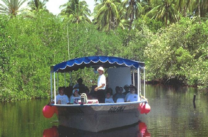 Mazatlan-shore-excursion-estero-ecological-reserve-jungle-tour-in-mazatlan-104346