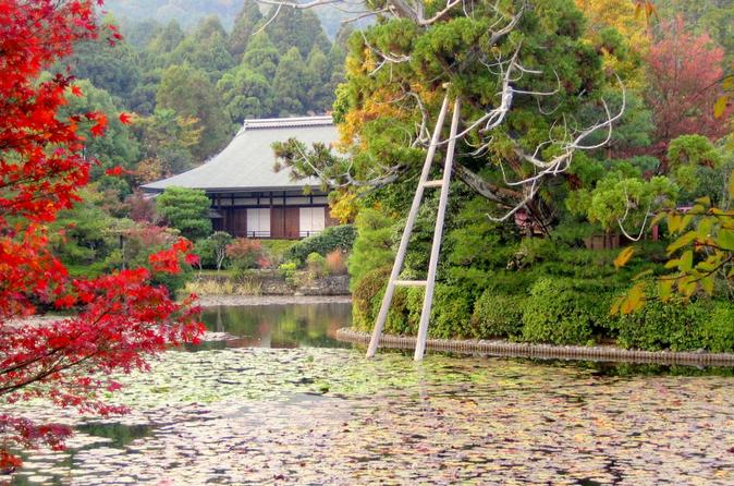 Scholar-led-kyoto-walking-tour-japanese-gardens-and-landscape-in-kyoto-148321