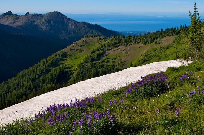 Private-tour-olympic-national-park-day-trip-from-seattle-in-seattle-163629
