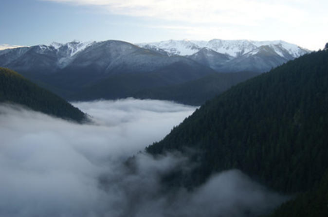Seattle-shore-excursion-small-group-olympic-national-park-tour-in-seattle-109613
