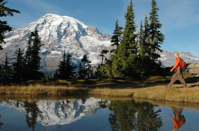 Small-group-mt-rainier-experience-including-hiking-or-snowshoeing-and-in-seattle-112084