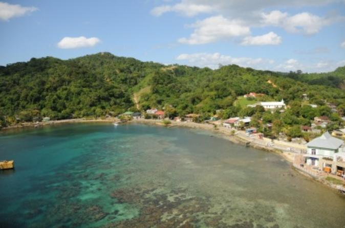 Roatan-shore-excursion-oak-mountain-trail-hike-in-roatan-106562