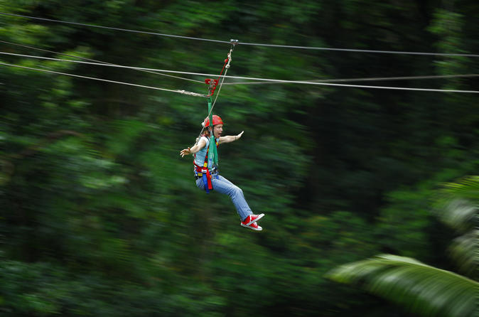 Daintree-rainforest-zipline-and-wildlife-habitat-day-trip-in-cairns-116655