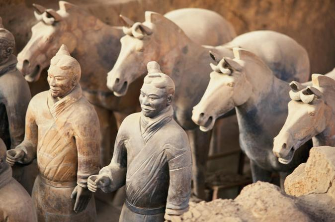 Private-tour-terracotta-warriors-with-xi-an-airport-transfer-in-xian-118036