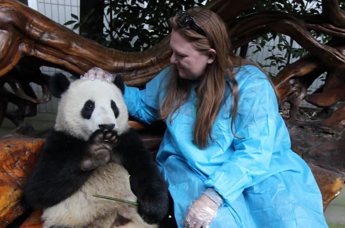 Viator-exclusive-volunteer-at-panda-breeding-center-with-optional-in-chengdu-148133