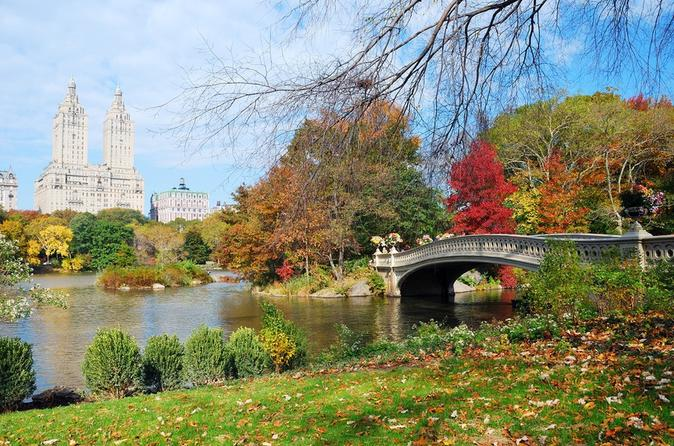 Highlights-of-central-park-walking-tour-in-new-york-city-132129