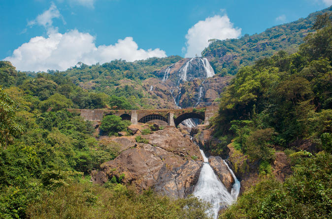 Private Tour: Jungle Adventure from Goa