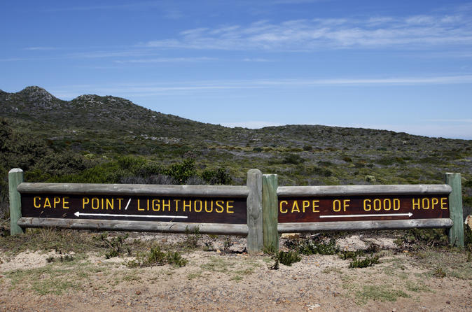 Private-tour-cape-point-and-constantia-valley-wine-region-from-cape-in-cape-town-119315