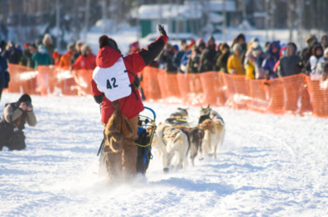 7-day-winter-alaska-experience-anchorage-and-iditarod-trail-sled-dog-in-anchorage-118627