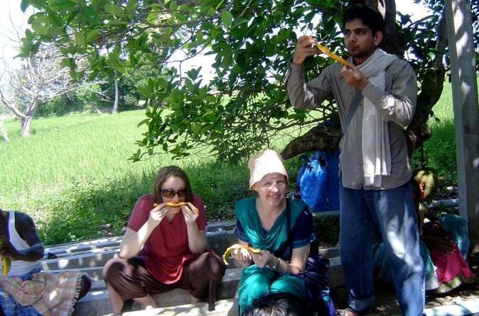 Small-group-day-trip-from-chennai-countryside-farm-tour-with-lunch-in-chennai-119814