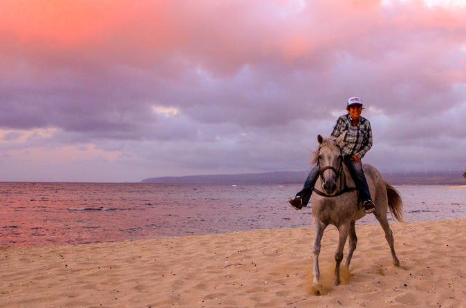 Hawaii Polo Oceanfront Horseback Rides