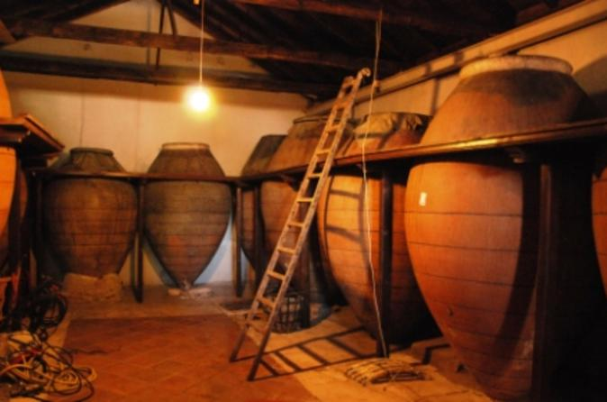 Spanish-wine-tour-from-madrid-in-madrid-125841