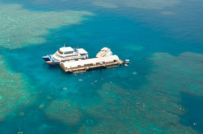 Great-barrier-reef-cruise-from-cairns-in-cairns-125760