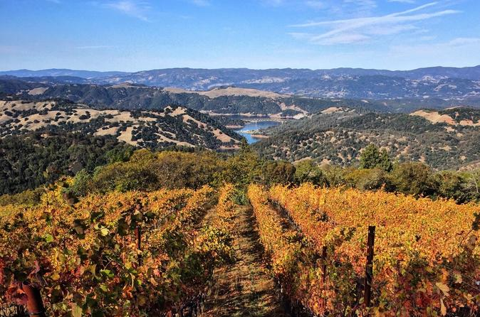 3-day Tour to Muir Woods, Napa Valley, and Sonoma County from San Francisco