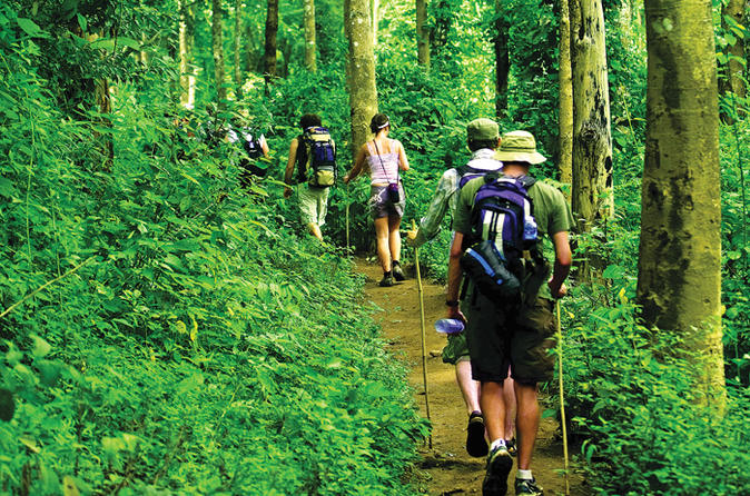 4-night-hill-tribe-village-tour-with-thai-jungle-trek-from-chiang-mai-in-chiang-mai-128963