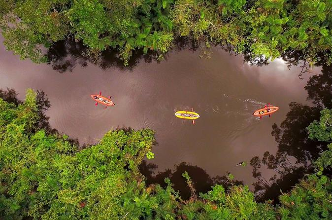 7-Day Amazon Camping and Kayaking Discover Yasuni
