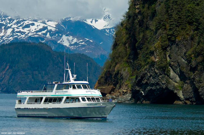 Kenai-fjords-national-park-cruise-from-seward-in-anchorage-132246