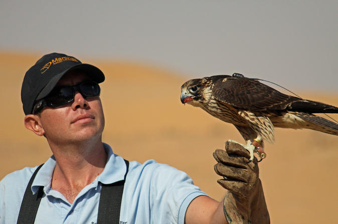 Private-tour-falconry-experience-and-wildlife-tour-in-dubai-with-in-dubai-154831