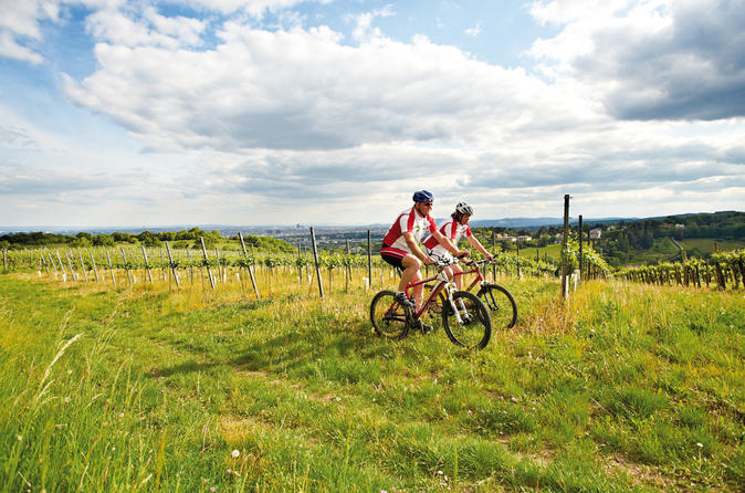 Private-tour-vienna-woods-and-kahlenberg-mountain-bike-ride-in-vienna-151917