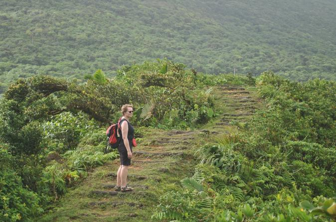 Morne-trois-pitons-national-park-day-trip-from-roseau-in-roseau-153396