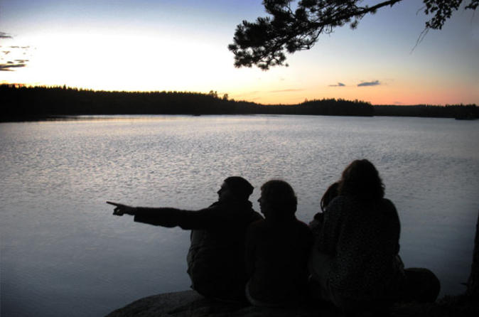 3-night-bergslagen-wildlife-experience-from-stockholm-camping-wolf-in-stockholm-160577