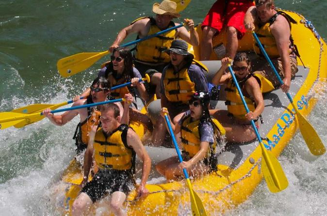 Half-day-or-full-day-snake-river-whitewater-rafting-trip-with-cookout-in-jackson-hole-158714