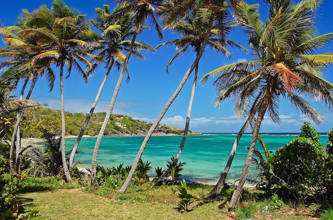 Carriacou-island-day-trip-from-grenada-in-st-george-s-158531