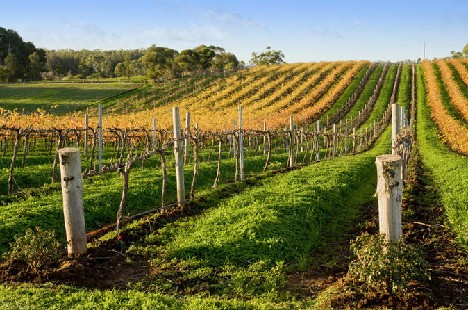 Victor Harbor with McLaren Vale Wine Region Tour from Adelaide