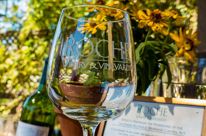 City and Wine: Half Day Sonoma Wine Tour plus Downtown Tour Hop on Hop off