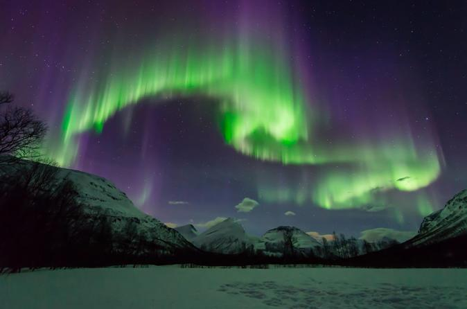Small-Group Aurora Hunt Northern Lights Tour from Tromso