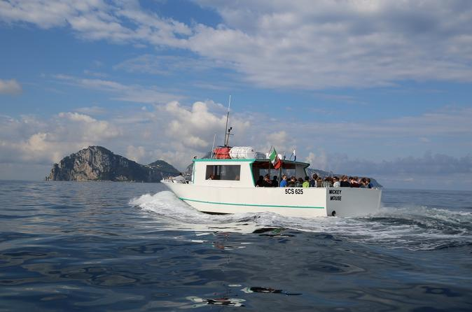 Capri Swim and Fun Half-day Boat Tour from Sorrento