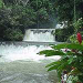 Black River Safari, YS Falls and Appleton Rum Estate Tour from Negril