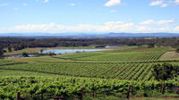 Private Hunter Valley Wine-Tasting Day Tour from Sydney Private Car Transfers