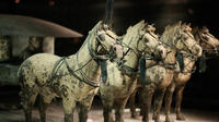 Private Tour: Terracotta Warriors and Han Yang Ling Mausoleum from Xi'an