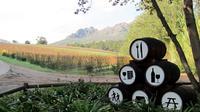 Vine Hopper: Hop-On Hop-Off Wine Tour - Southern Route