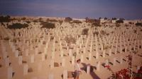 Shore Excursion: Day Trip to World War II Cemeteries in El Alamein from Alexandria Port  Private Car Transfers